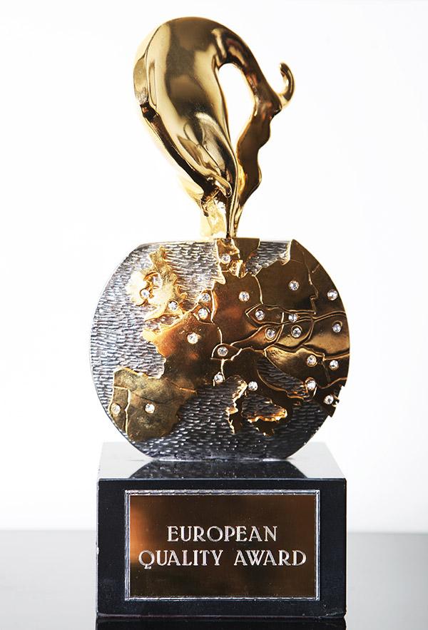 European Quality Award: Wikis